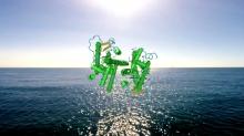 Aliens in Green – Xenopolitics #1: Petro-bodies and Geopolitics of Hormones