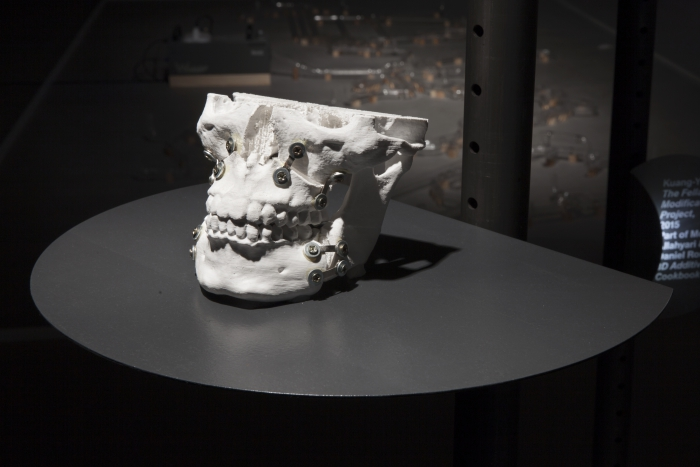 """The Fellatio Modification Project by Kuang-Yi Ku (part of The 3D Additivist Cookbook) at the exhibition """"alien matter"""", transmediale 2017."""